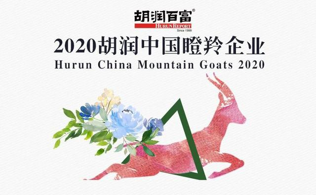 微脉登榜《2020胡润中国瞪羚企业》,高成长性实力再获认可